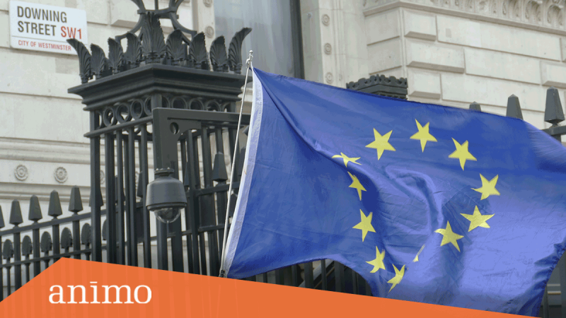 Top 5 Things to Consider as the Brexit Transition Period Ends